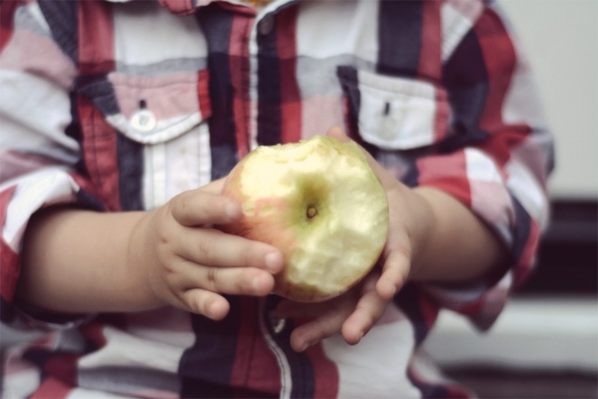 02052015_toddler twins apples plaid03